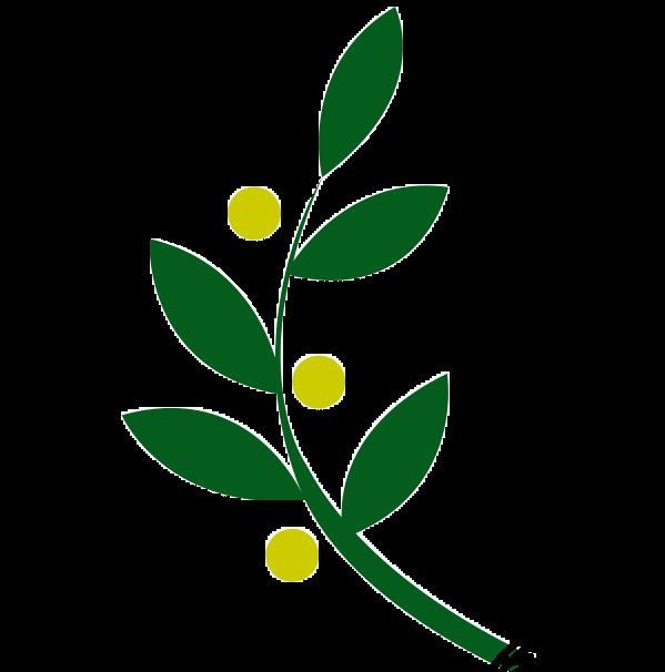 Olive Vine Recording Company